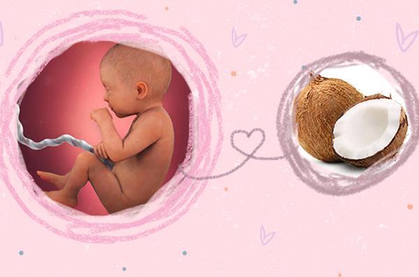 tuần thai thứ 31
